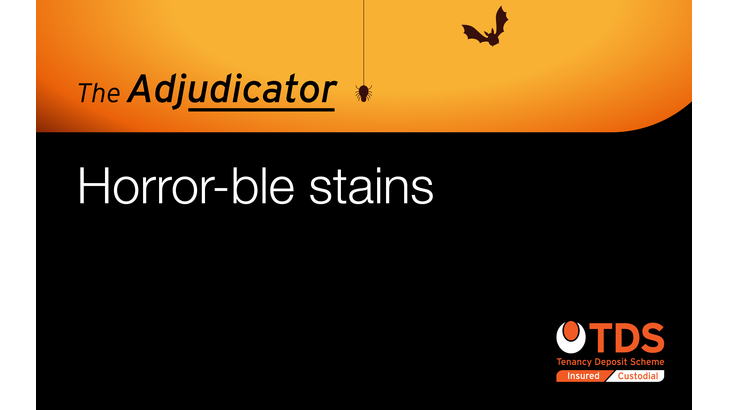 The Adjudicator - Horror-ble stains
