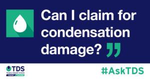 Can I claim for condensation damage? - blog image