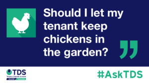"""Should I let my tenant keep chickens in the garden?"""""""