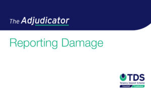 The Adjudicator - Reporting Damage
